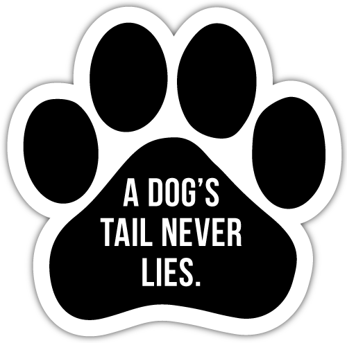 A dog's tail never lies thumbnail