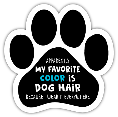 Favorite Color Dog Hair thumbnail