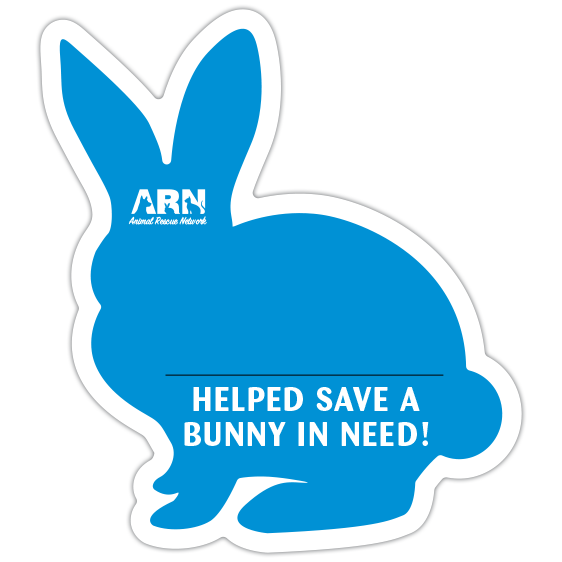 Bunny Silhouette (Blue) thumbnail