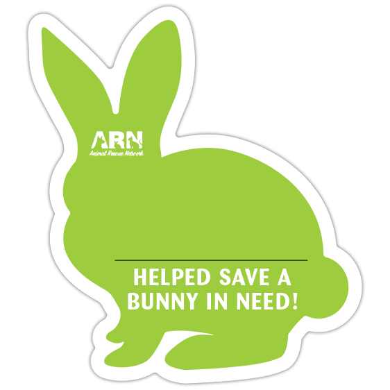Bunny Silhouette (Lime) thumbnail
