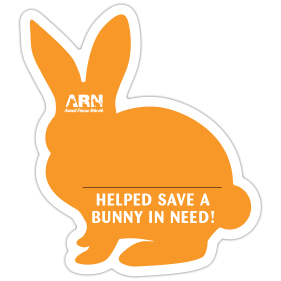 Bunny Silhouette (Orange) thumbnail