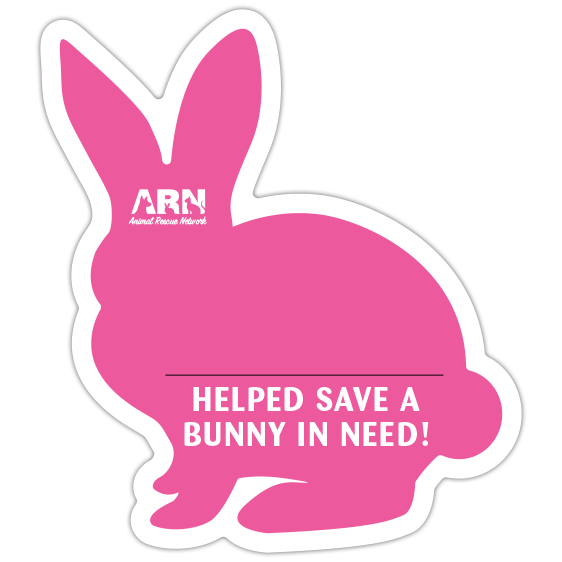Bunny Silhouette (Pink) thumbnail