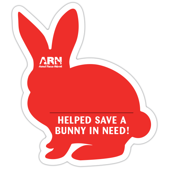 Bunny Silhouette (Red) thumbnail