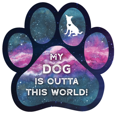 Outta This World - Dog thumbnail