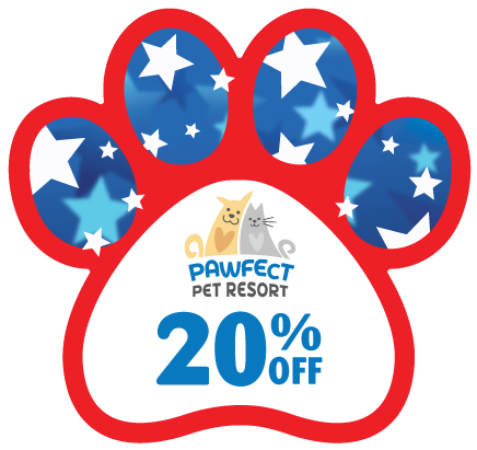 PAW - Stars and Stripes thumbnail
