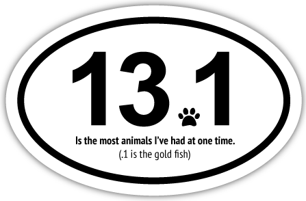 13.1 - The most animals I've had at one time thumbnail