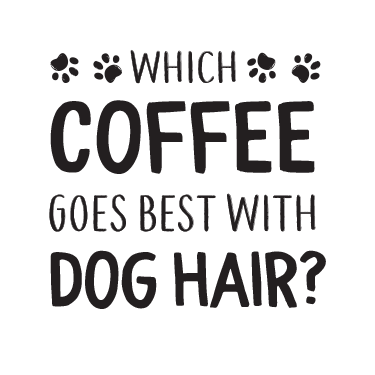 Coffee Dog Hair thumbnail
