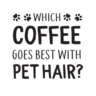 Coffee Pet Hair thumbnail