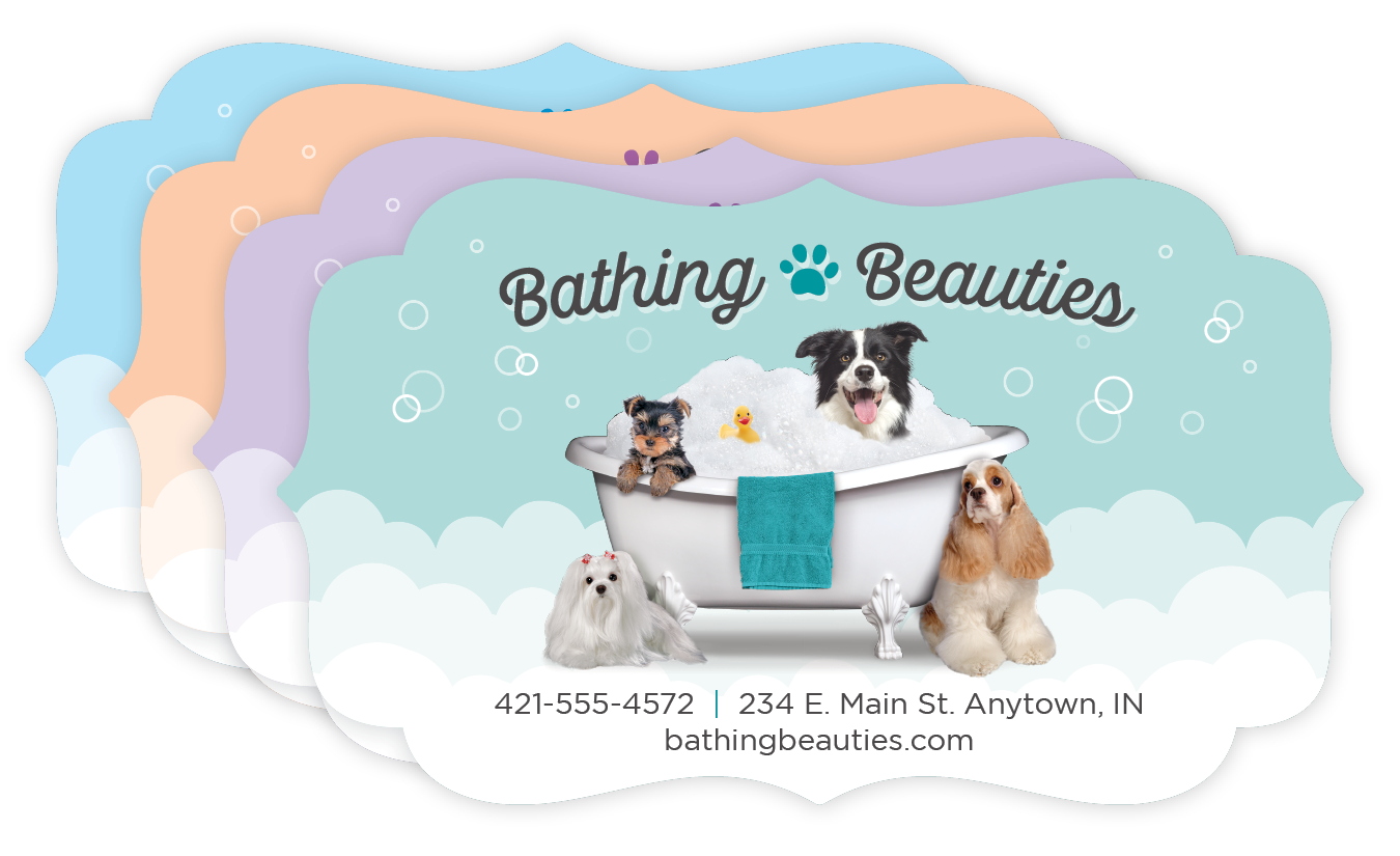 Dogs in Tub thumbnail