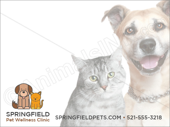 Dog and Cat thumbnail