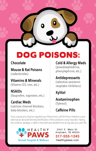 Dog Poisons (brown and white dog) thumbnail