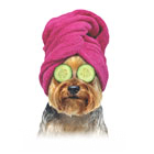 Yorkie with Towel (pink) thumbnail
